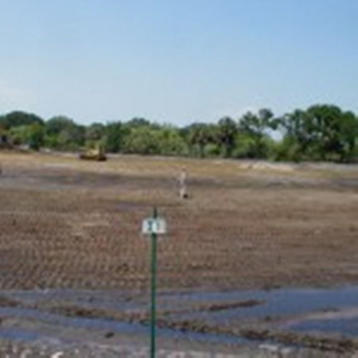 Marsh2-Grading-pasture-to-appropriate-elevation-for-freshwater-marsh-restoration-2005
